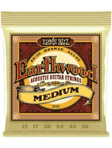 Snaren Ernie Ball Earthwood Medium 13-56