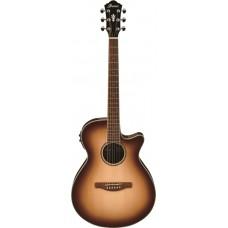 Ibanez Akoestische gitaar AEG10IINNB