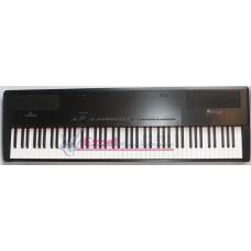 Digitale Piano Primus  Soundsation