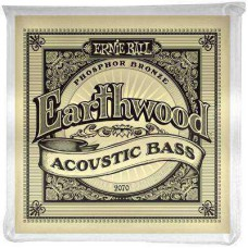 Snare set Acoustic Basgitaar Ernie Ball 2070 45-95